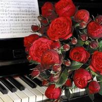 День рождения сайта «Только МЕЛОДИЧНАЯ музыка!»
