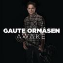 Gaute Ormasen - Awake